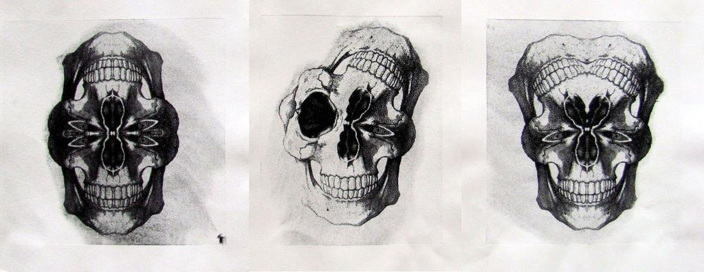 Totemskulls by memzu