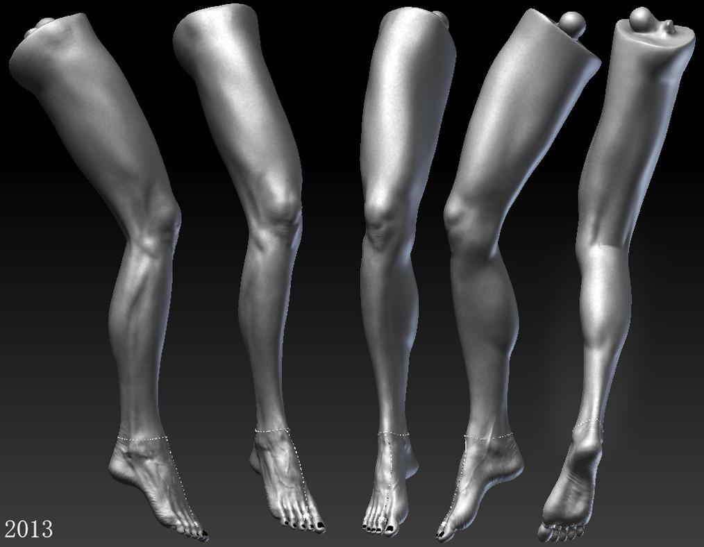 anatomy study (woman\'s leg) by AnatolB on DeviantArt