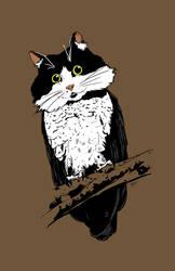 Owlcat by artofdawn