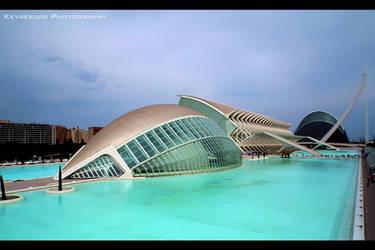 Valencia by Kevrekidis