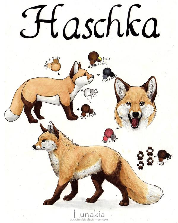 Haschka by Lunakia