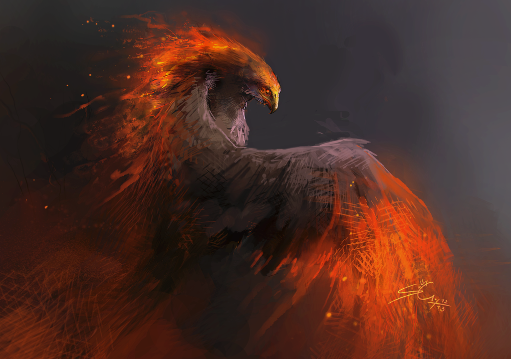 Fire Bird - Sketch by Sally Gottschalk