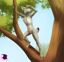 Treetop Seeking