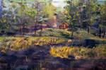 Camp at Efner Lake Brook