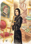 DH Snape and Gryffindor sword