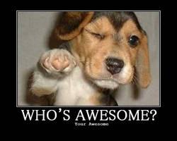 awesome_puppy by Kinzai-Ninja