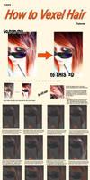 Vexel Tutorial - Hair