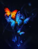 Butterflies by kribin