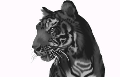 tiger painted by lilsurferbabe