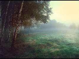 Morning Landscape by KamiiYuki