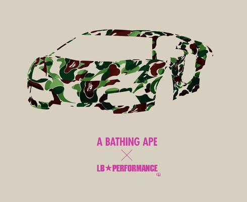 A Bathing Ape X LB Performance
