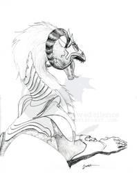 35.armored dragon