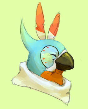 loz: botw - bird friend