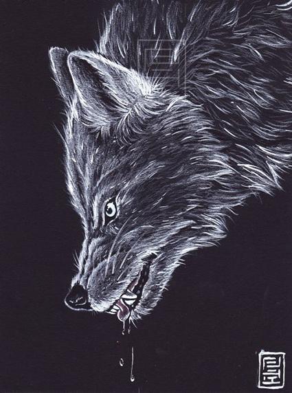 Okami by Lilith-Samsa