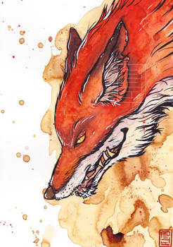 Old fox