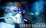 Garrus Vakarian: Happy N7 Day