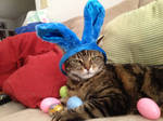 Cody: Happy Easter