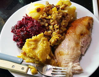 Amazing Celebratory Turkey Meal by Skiriki