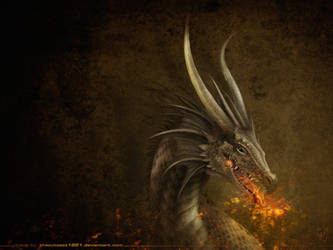 The Dragon wallpaper by TheOutcast1821