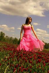 Field of Fairy Tale