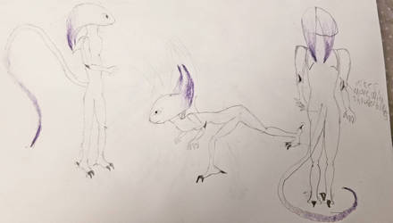 xentroarch redesign reference