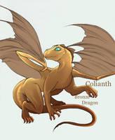Colianth Char Sketch