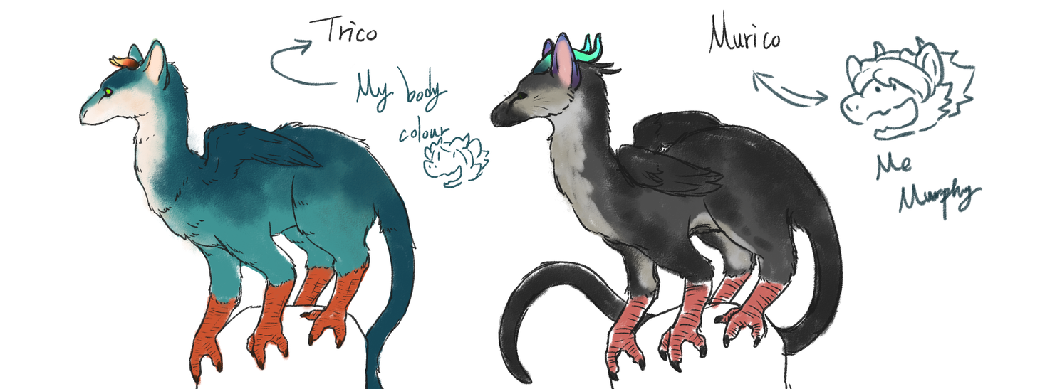 My Trico's something by yuhhei4666