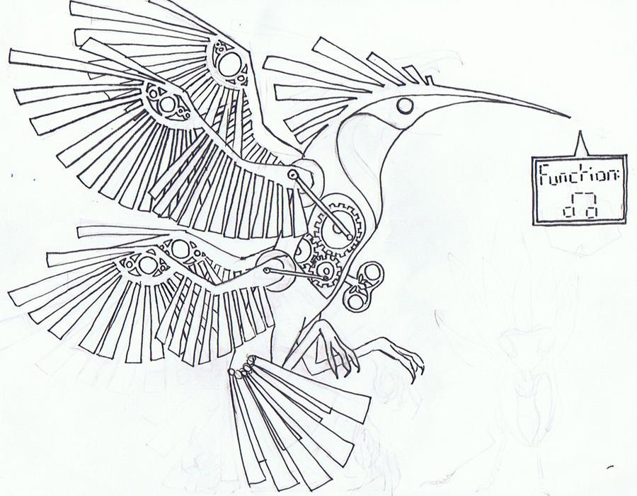 Line Art Hummingbird : Hummingbird line drawing