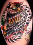 Liz's owl