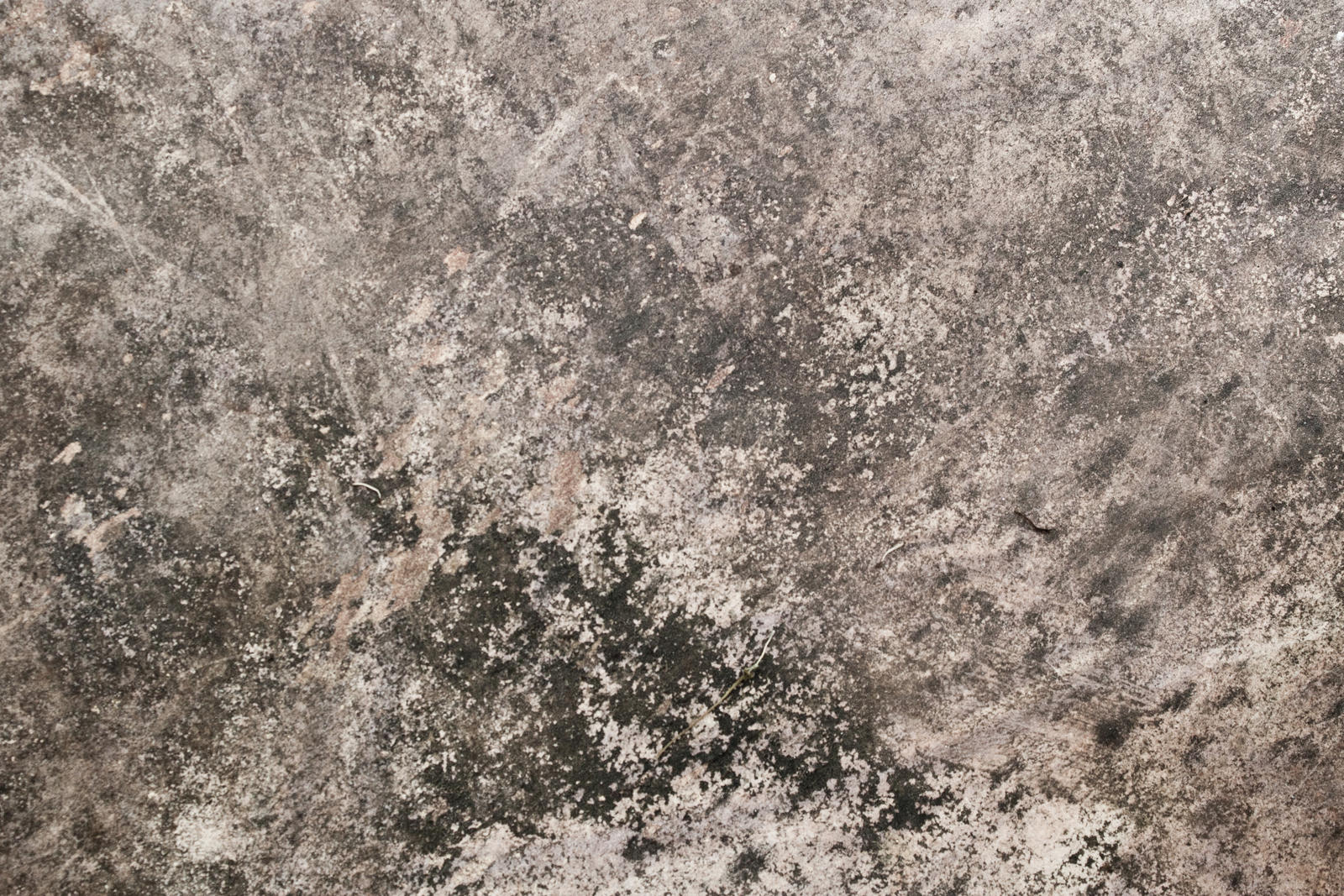 The gallery for --> Dusty Texture