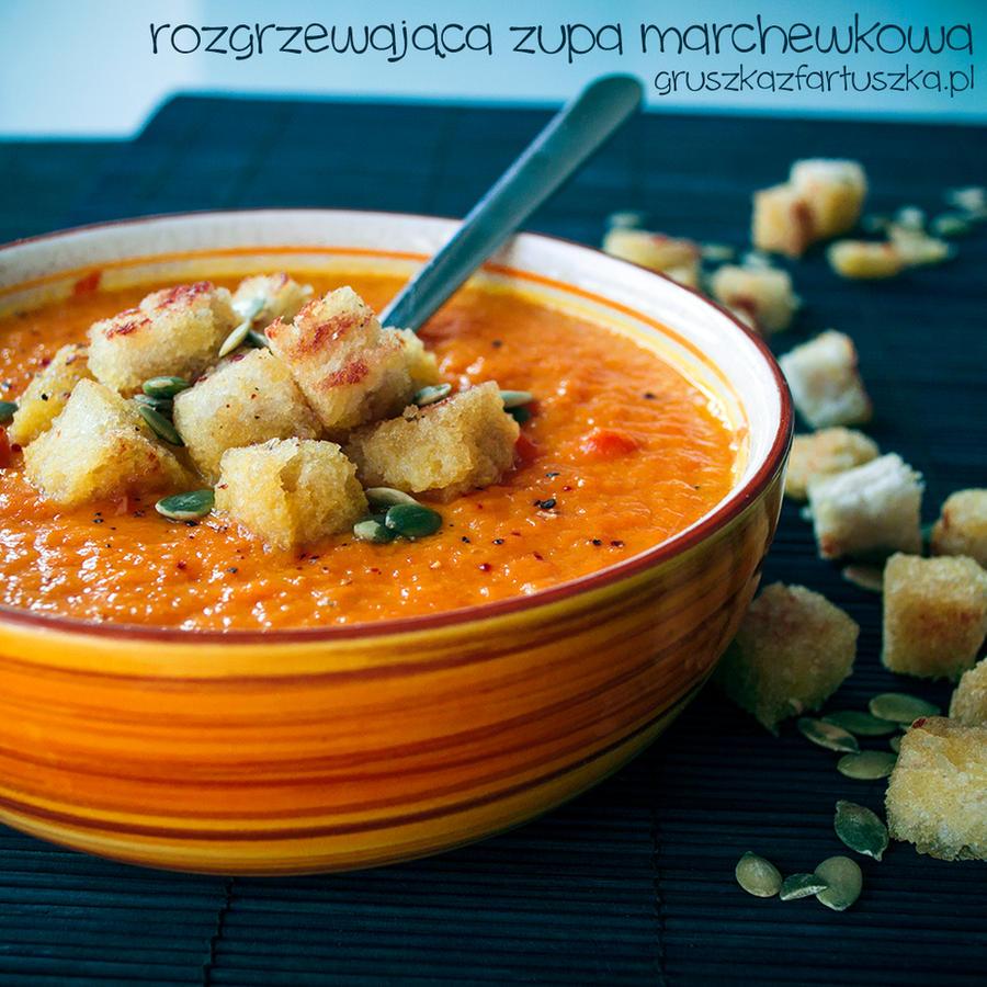 warming carrot soup by Pokakulka