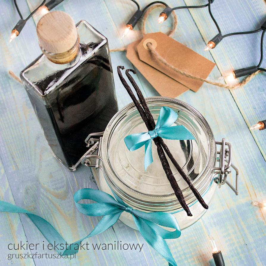 Homemade vanilla extract and sugar by Pokakulka