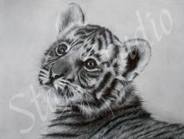 Tiger cub drawing by JamiePickering