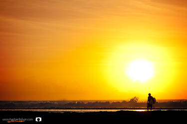 .the surfer. by b-photo