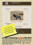 Web Site Consulting Marketing Advertisment