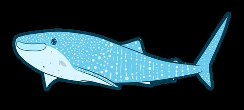 Trixie Whale Shark by Igloo9201