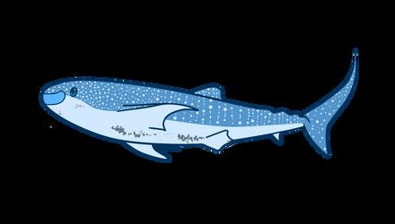 Alice Whale Shark by Igloo9201