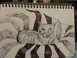 Cat in a Beanbag by BringMePenguinDust