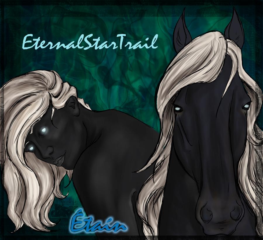 EternalStarTrail's Profile Picture
