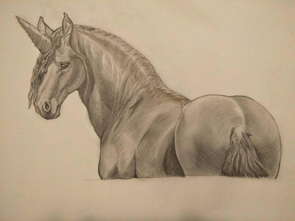 friendship unicorn  by dude707LoL