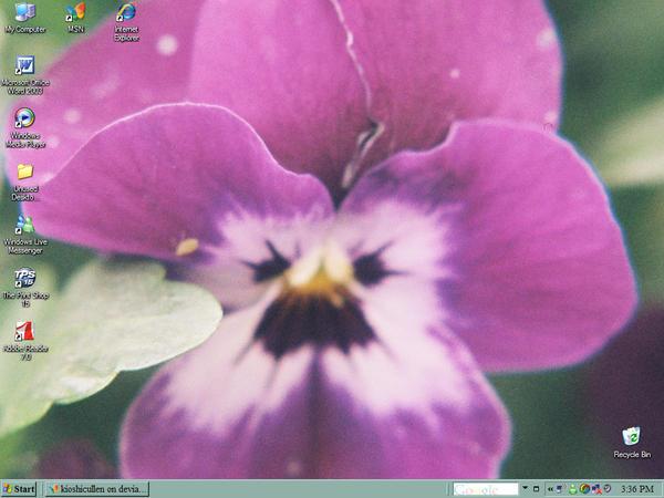 screen shot by Onnatoe
