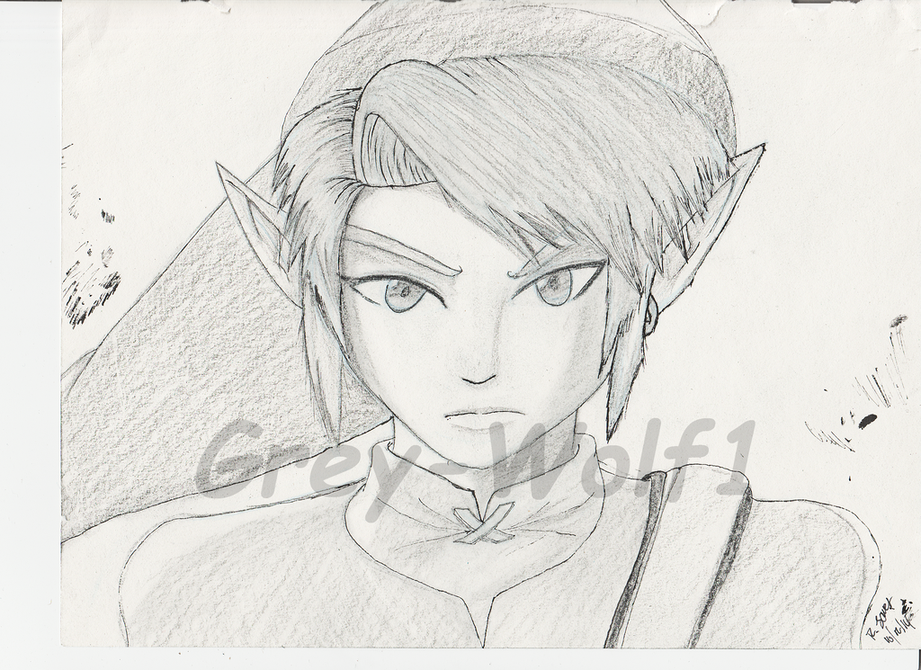 The Hyrule Warrior Link by Grey-Wolf1