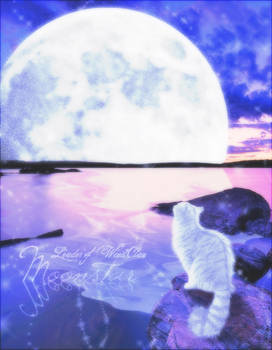 Moonshimmer