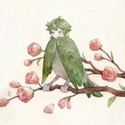 Even bird boys cry