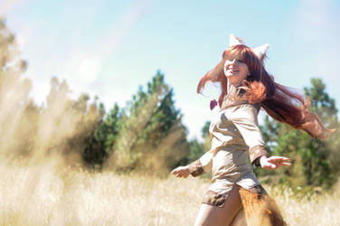 Spice and Wolf - Horo by Hazuza