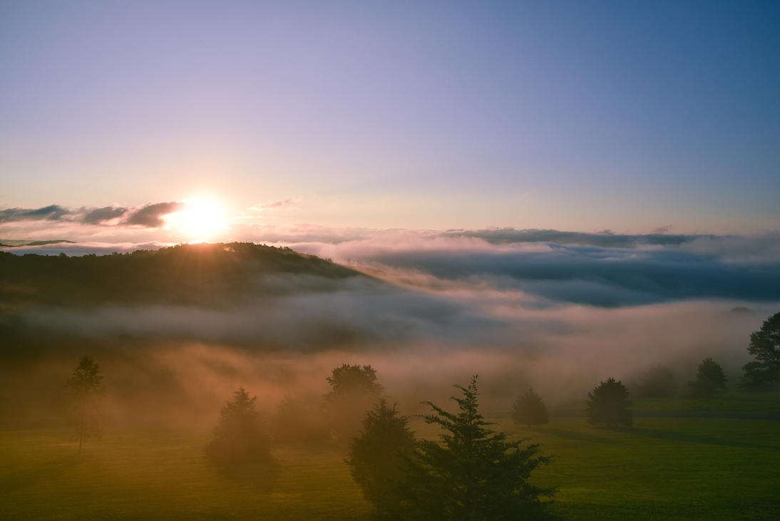 Morning Sun by 12GO