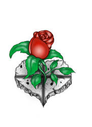 Undying Rose