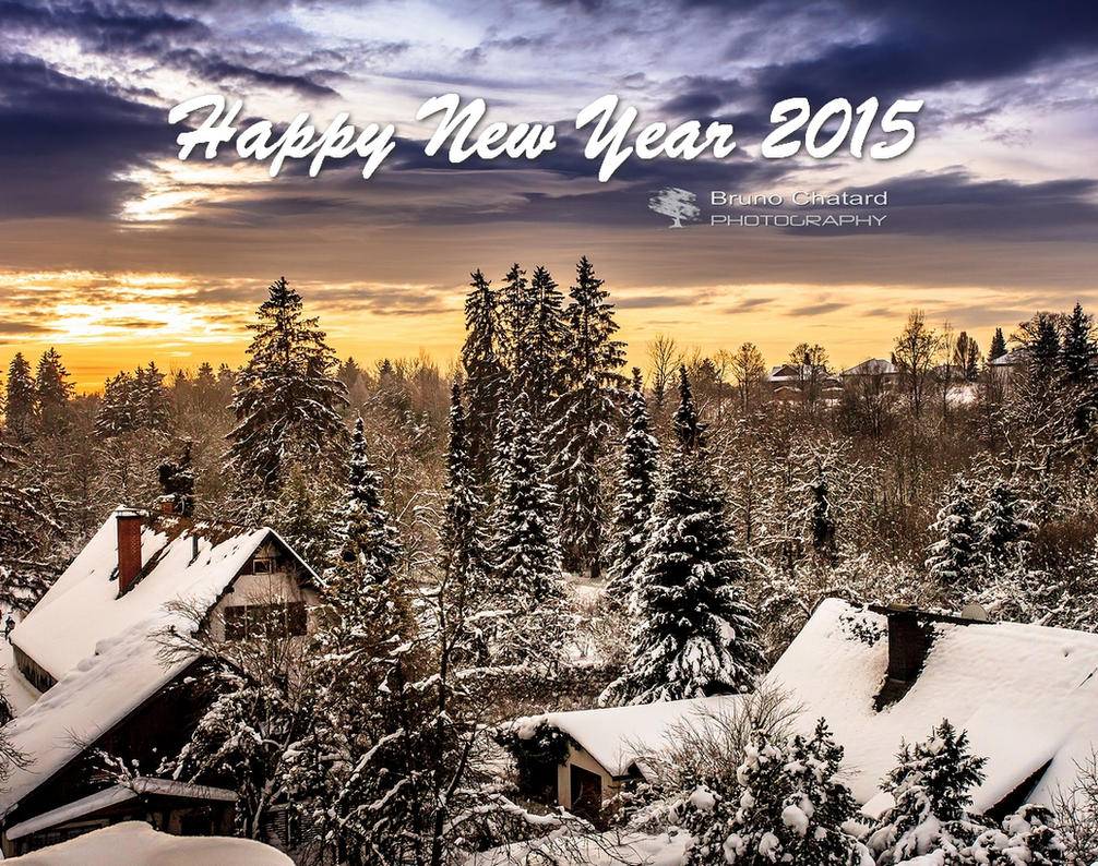 Happy New Year 2015 by BrunoCHATARD