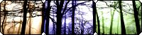 Pixel Woods F2U by F-FREAK