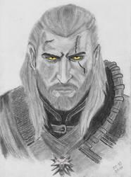Witcher 3 by KelHur